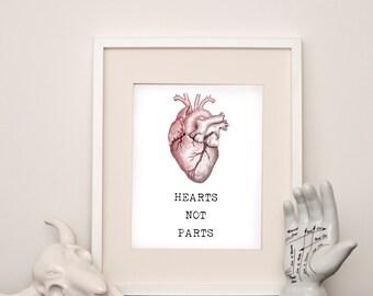 Hearts Not Parts - Anatomical Heart - Art Print - Various sizes
