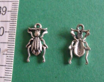 set of 5 charms scarabet 17mmx9mm