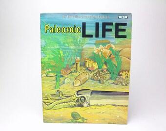 Vintage Educational Coloring Book Workbook - 1981 Paleozoic Life Spirizzi - Sea Ocean Jellyfish Mollusks Natural History