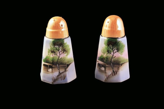 Salt and Pepper Shakers, Hand Painted, Swan Pattern, Lusterware, Made In Japan