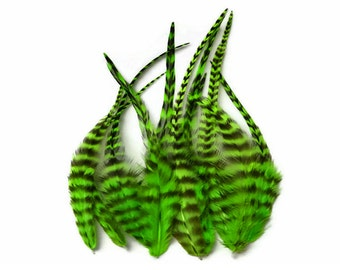 Rooster Feathers, 1 Dozen - SHORT LIME GREEN Grizzly Rooster Saddle Feathers : 402