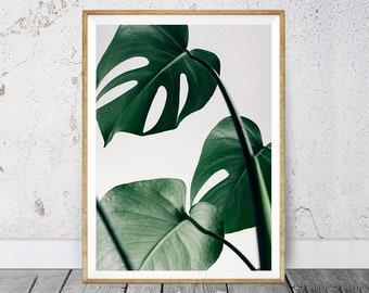 Monstera Poster, Instant Download Printable Art, Best Selling, Botanic Plant Print, Monstera Fine Art, Modern Print, Minimalism Art