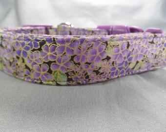 Gilded Violets Dog Collar