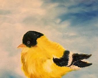 Beautiful Goldfinch