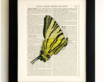 FRAMED ART PRINT on old antique book page - Butterfly, Vintage Upcycled Wall Art Print Encyclopaedia Dictionary Page