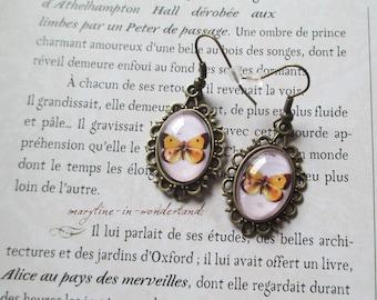 Yellow Butterfly Cabochon earrings