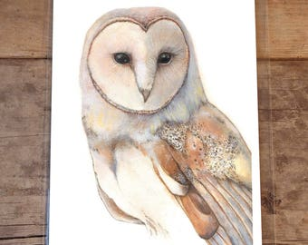 Barn Owl, 8 by 10 Inches, Fine Art Glicee Print of Original, Owl Art, Animal Illustration, Art Print, Animal Art, Bird Art, Animal Print