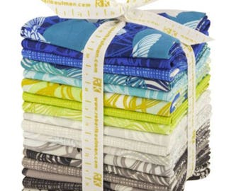 Kaufman - Valori Wells - Musings Fat Quarter Bundle