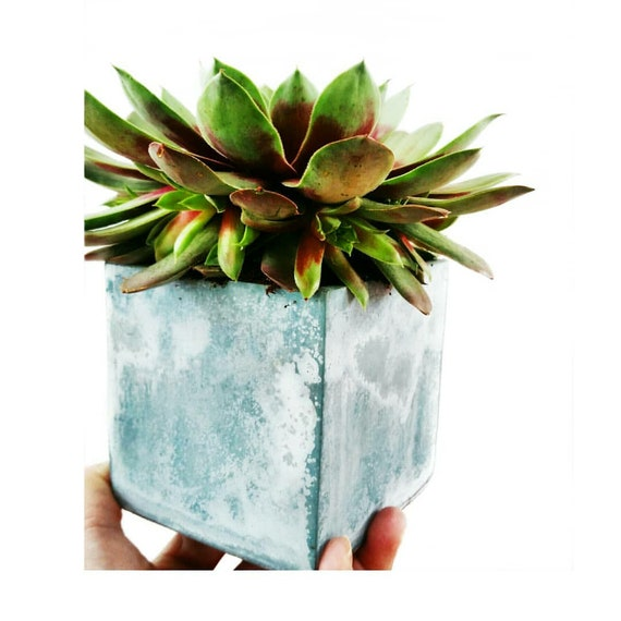 Modern Planter/Succulent Planter/Desk Planter/Concrete Home Decor/Gemetic Decor/Minimalist/Square Planter/Cactus Planter