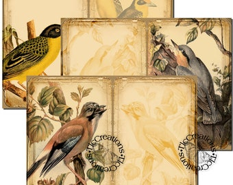 Birds in Nature Printable Vintage Journal Papers and Journaling Cards