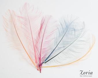 10-12 Inch Burnt Ostrich Feather Trims Per Piece | DF-BOST10