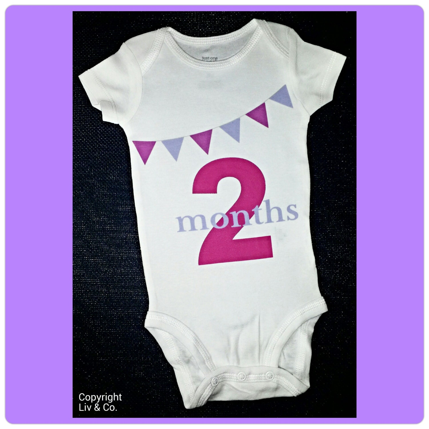 Baby Girl 2 Month Milestone e Piece Bodysuit Outfit Monthly