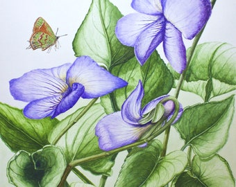Viola with Butterfly