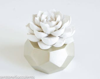 Succulent Sculpture Geometric Planter, Indoor Planter Desktop Accessories Modern Minimalist HomeOffice Decor Unique Art Object