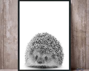 Hedgehog Print, Hedgehog Art, Hedgehog Wall Art, Nursery Print, Black White, Hedgehog Photo, Hedgehog Decor, Hedgehog Poster, Nursery Art