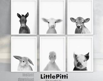 Farm animal print, barn animal art, lamb, foal, bunny, piglet, duck, calf, gray nursery decor, black white nursery animals, set of 6 animals