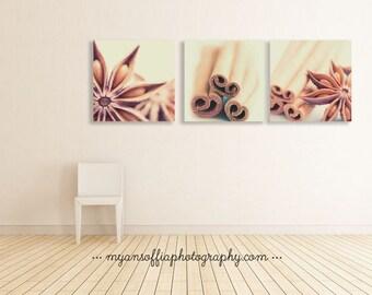 rustic home decor, cinnamon sticks photo, kitchen art, star anise photograph, spice prints, food photography, brown decor, bakery art, cafe