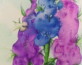 Watercolor Delphinium with a gray blue mat