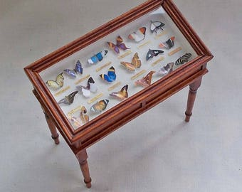 Dolls house miniatures Large Butterfly Display Collectors Table