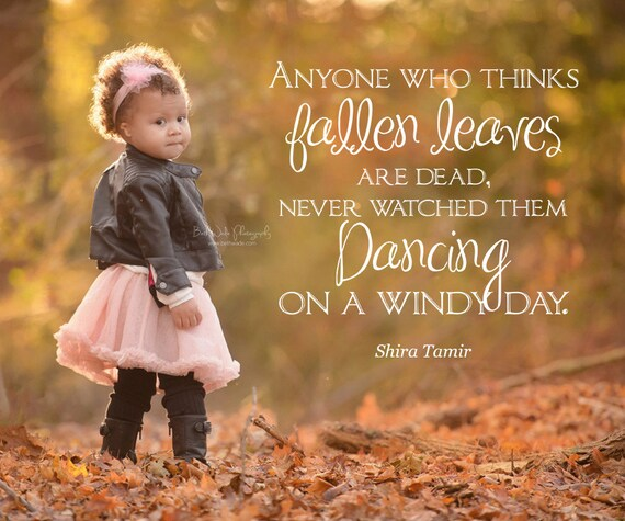 Autumn Fall Word Overlay Autumn Leaves Quote Phrase Photo
