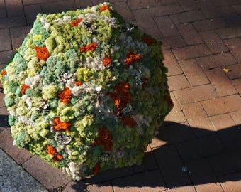 Moss Umbrella / Plant Parasol, Custom Made, Festival or Costume Accessory, Prop for Photos, Parties, and Events
