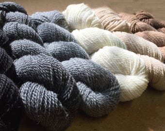 Alpaca Yarn in Gradient Natural Shades