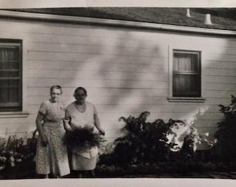Original Vintage Photograph | Lady Friends & Fern