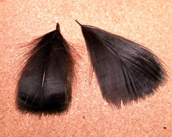 10 natural feather - 7 to 9 cm-black - 91 PLU