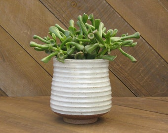 Carved Planter - Ceramic Plant Pot - Handcarved - Thrown - Striped- Tin White Glaze - Go Play Clay - Allison Guiliotis - Made to Order
