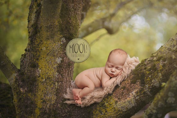 Digital prop for newborn digital background newborn photography outside bed nature forest tree branch from mooifotografie on etsy studio