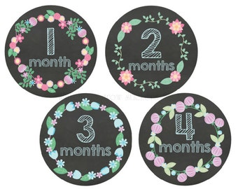 Baby Monthly Stickers Milestone Stickers Month Stickers Monthly Baby Stickers Photo Props Baby Shower Gift Monthly Baby Stickers