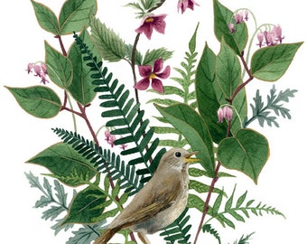 Fine Art Print of Original Watercolor Painting - Woodland Birdsong