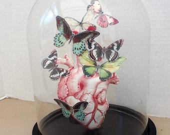 Glass display dome-heart and butterflies sculpture-faux taxidermy heart-vanitas sculpture-fabric sculpture