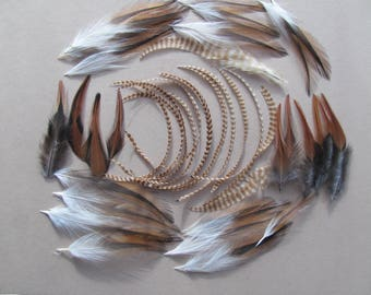 Barred Ginger and Brown Saddle Hackle Feathers Hand Selected for Jewelry,Crafts,Hair Decoration,Extentions,Fly Tying,thin feathers and wide
