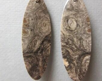 Beautiful Buckeye Burl Drop Earrings Exotic Wood repurposed Handcrafted ExoticWoodJewelry