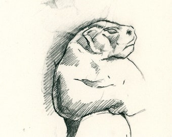 "Original Drawing 'Bear' from Sabine's Notebook' approx 5.5"" X 3"""