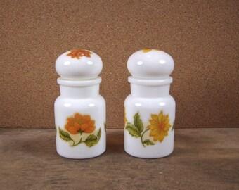 Vintage Apothecary Jars Set of 2 Belgium 1960s Milkglass