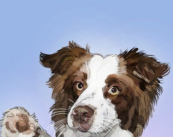 Custom pet portrait Border collie painting Australian shepherd illustration Personalized gift Dog portrait commission Daughter in law gift