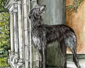 Deerhound  Art Print