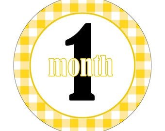 12 Monthly Baby Milestone Waterproof Glossy Stickers - Just Born - Newborn - Weekly stickers available - Design M025-03