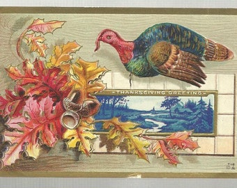 Thanksgiving Greeting Turkey Fall Leaves Acorns Vintage Postcard 085