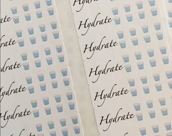 Hydrate Planner Stickers Perfect for Day Designer