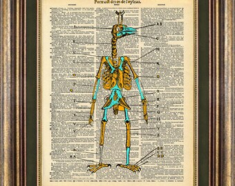 Bird Man Diagram Book art Vintage Dictionary Page Up Cycled