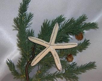 On Sale Christmas Ornament, Beach Wedding Favor or Ornament, Pencil Starfish Ornament