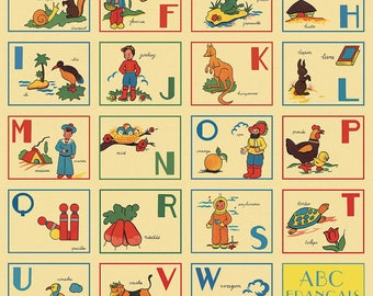 French ABC's Wrapping Paper by Cavallini to Frame or for Wrapping, Book Binding, Decoupage, Collage, Scrapbooking and Paper Arts PSS 2702