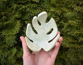 Celadon Medium Monstera Dish