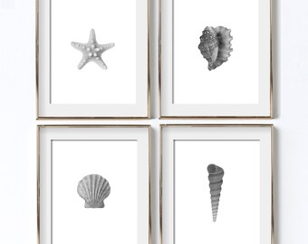 Seashell Print Digital Download Shell Art Scallop Art Sea Poster Summer Printable Conch Shell Sea Shell Print B & W Beach Photo Decor Art