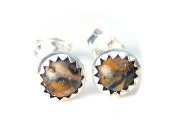 Leopardskin Agate Stud Earrings, Gemstone Studs for Men or Women