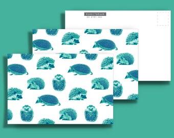 Three (3) LARGE Hedgehog 5x7 Postcards