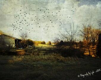 Farm Photography, Barn Photography, Rural Photography, Farmhouse Decor, Country Landscape Print, Rustic Home Decor, Wall Art, Mudroom Decor